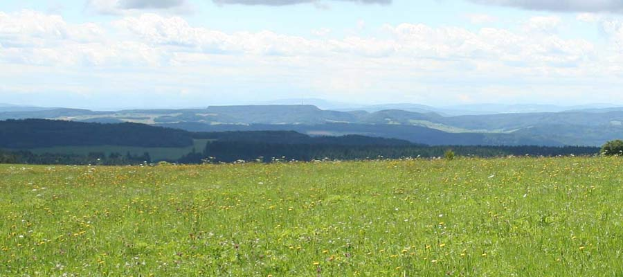 Die Umgebung der Valere psychosomatische Privatklinik in Dachsberg, Schwarzwald: St. Blasien, Waldshut, Dachsberg, Wilfingen, Hotzenwald